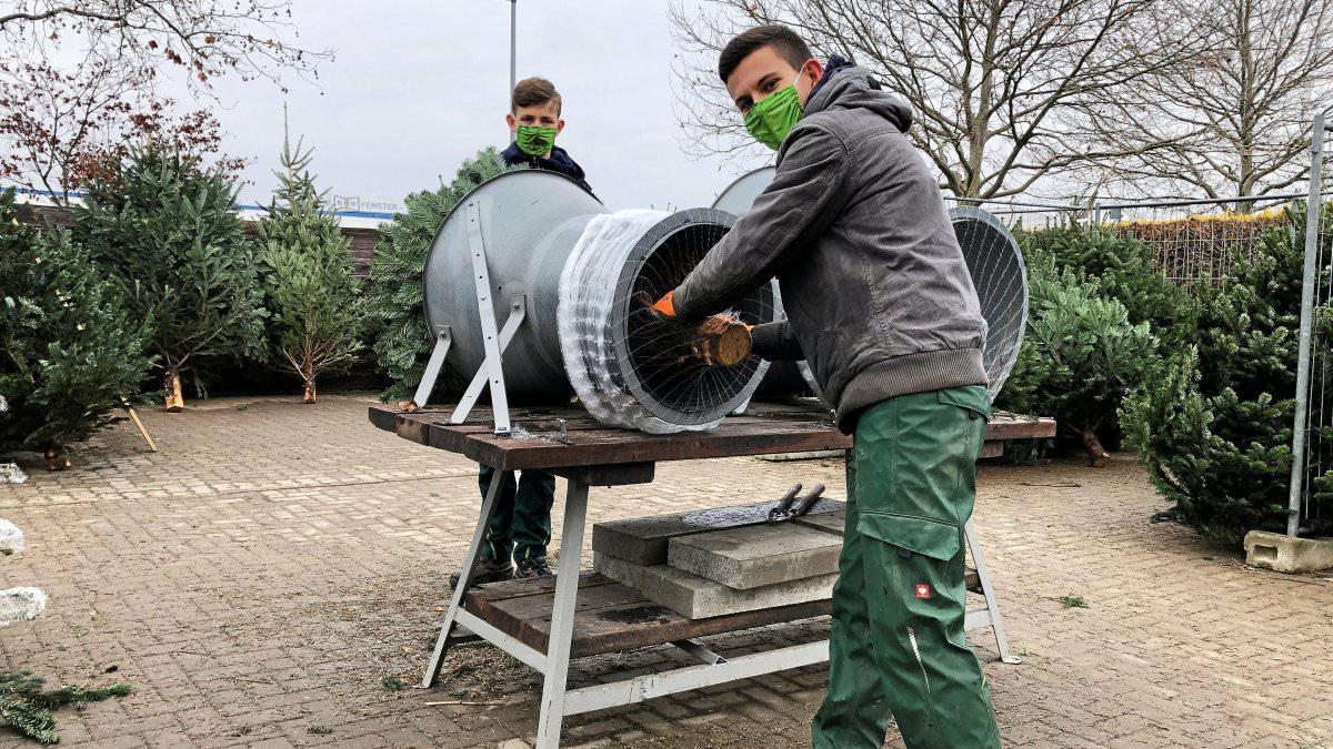 Seidel-Weihnachtsbäume-Nordmanntannen-Wolfenbüttel